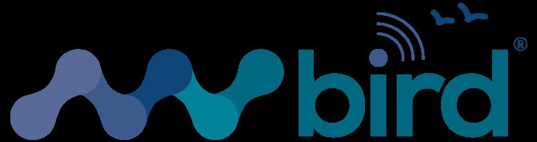nvisionist_nvbird_logo